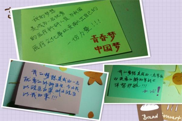 """2010级团学青年们以""""青春梦,皖医梦,中国梦""""为主题联系实际将自己的"""