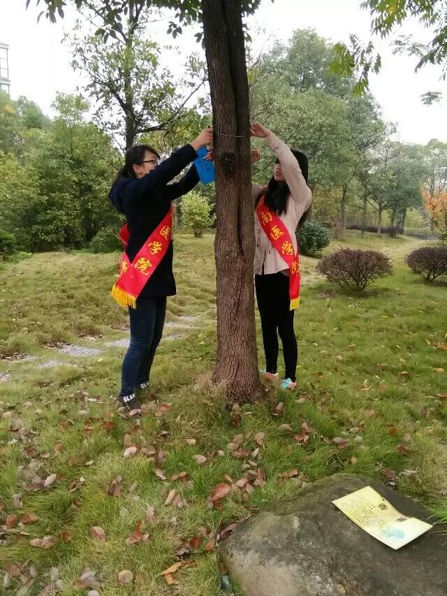 爱护树木 保护环境